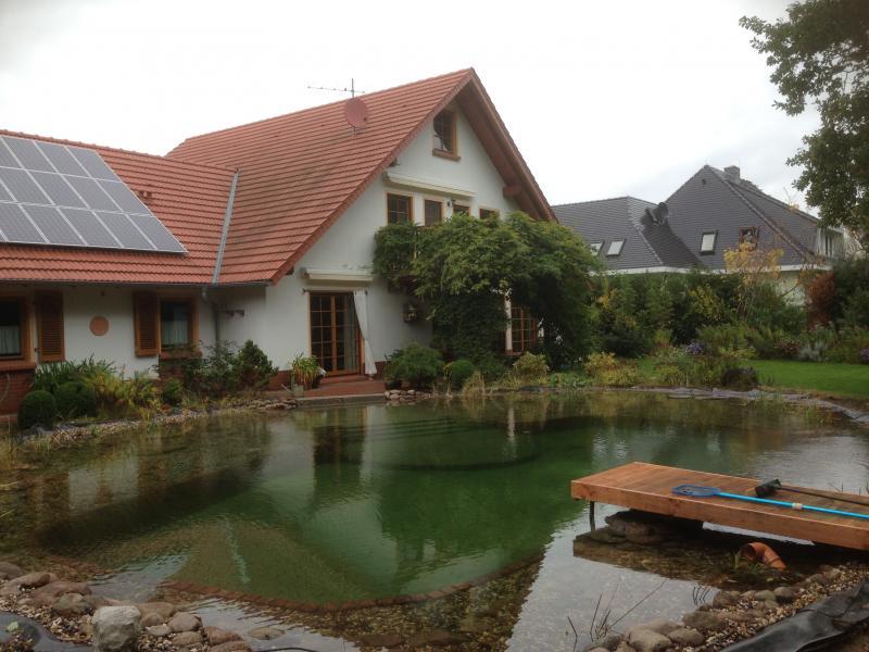 garten und landschaftsbau kinnemann schwimmteich. Black Bedroom Furniture Sets. Home Design Ideas